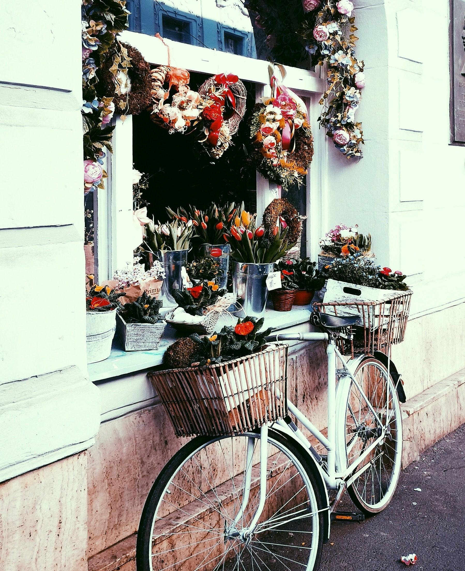 Christmas Flower Bike